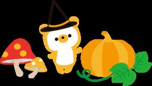 くまかぼちゃ