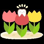 spring_tulip